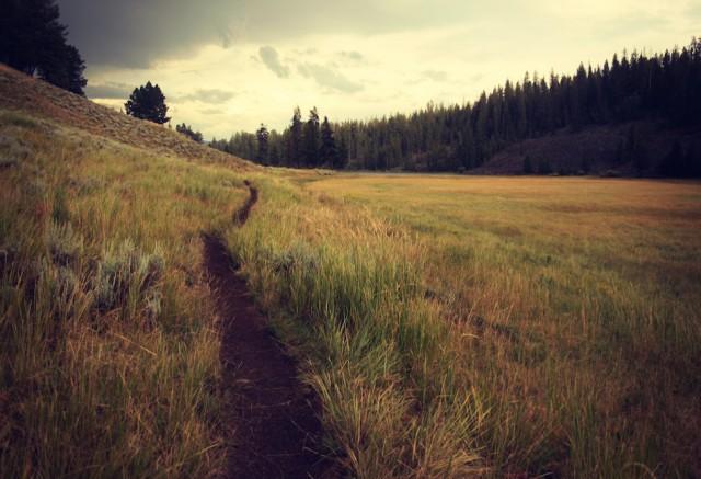 il sentiero 640x437 - il sentiero