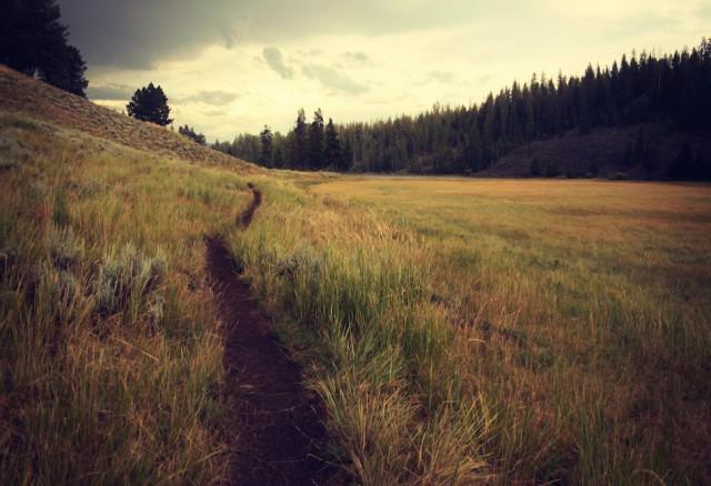 il sentiero1 640x438 - il sentiero