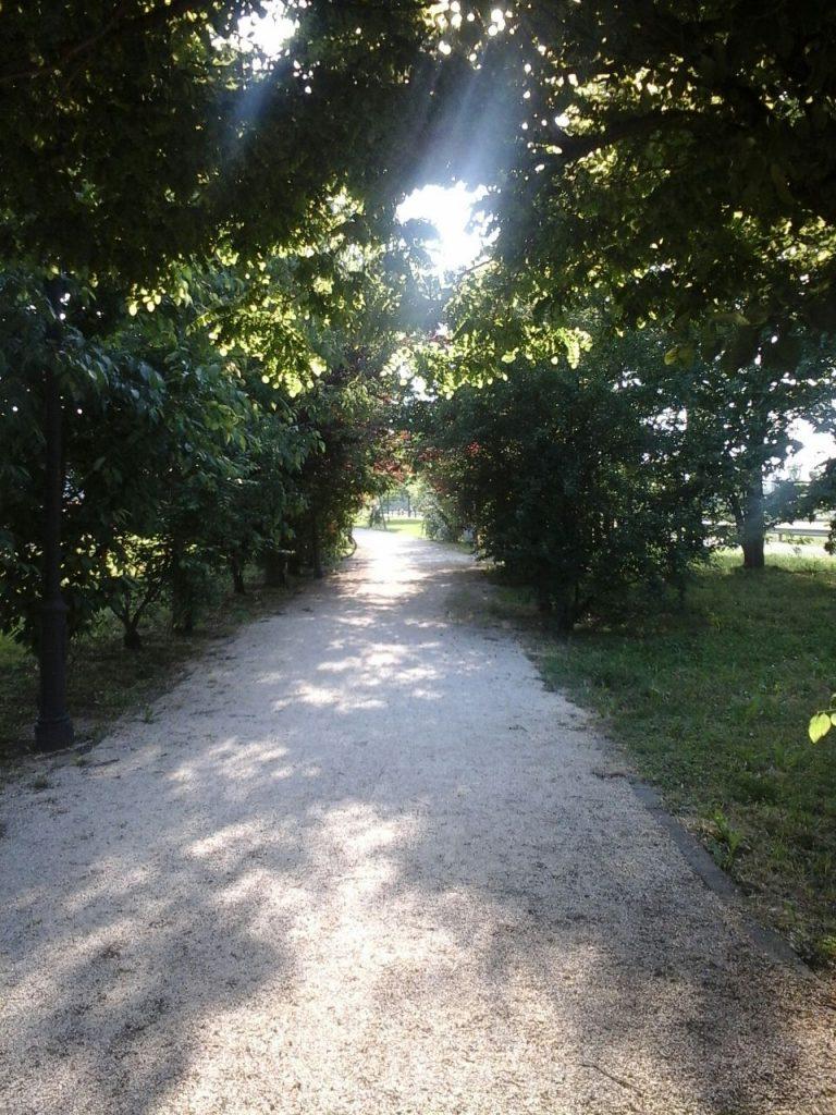 I Light Morning ore 8_8.30 am, ogni mercoledì in studio a Milano