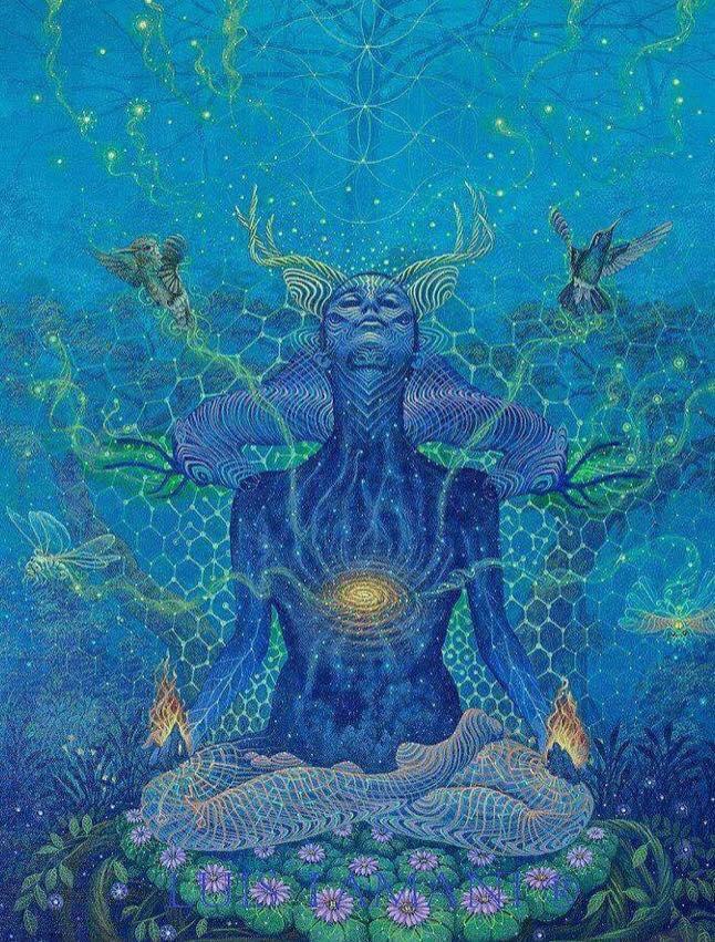 I corsi evolutivi, Il Risveglio di sé insieme alle meditazioni e ai Ritiri