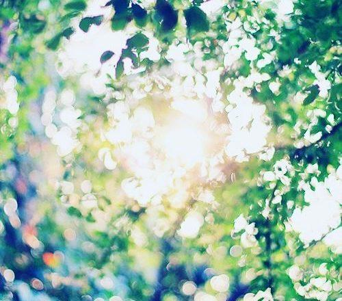 La Luce è in voi